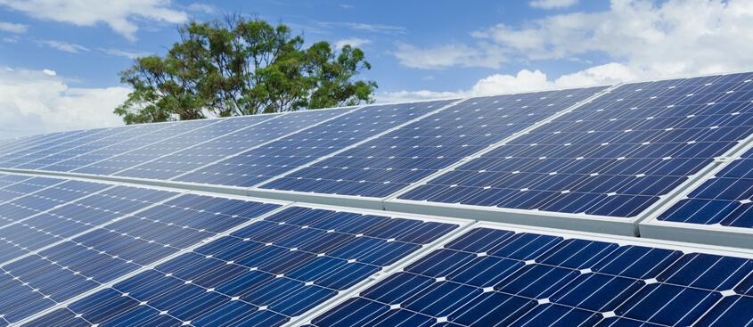 Sustainability-bottom image